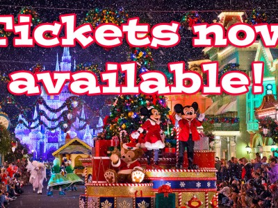 2015 Magic Kingdom Halloween and Christmas Special Event Tickets